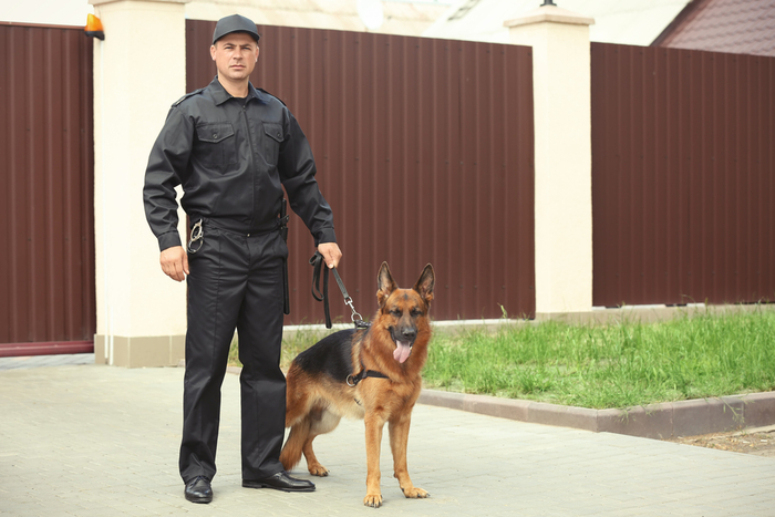 basic_Security_Officer