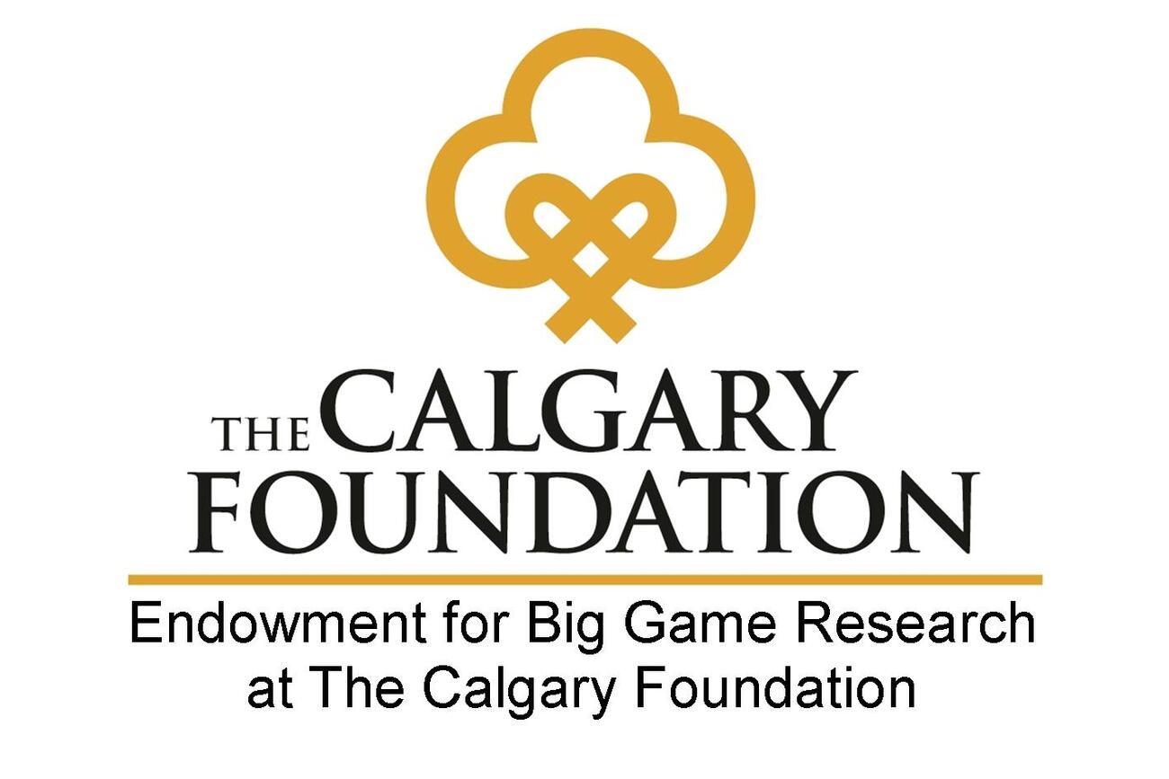 Calgary-Foundation1
