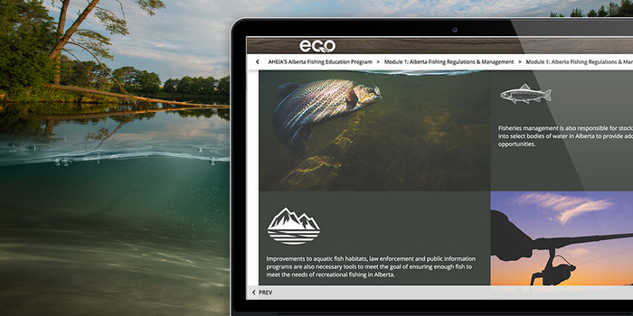 AHEIA-fishing-feature