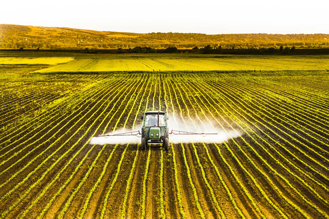 Tractor_spraying_a_corn_field
